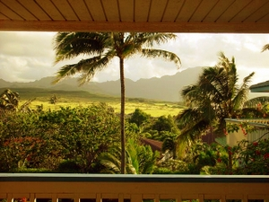 View from bed at Poipu home